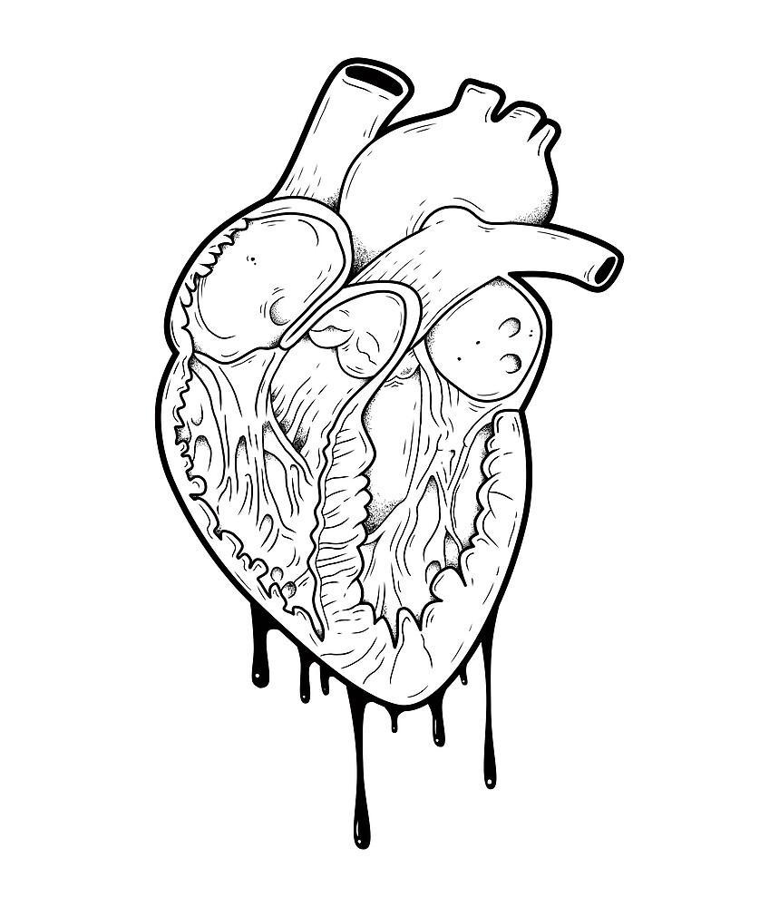 «Corazón vacío» de Natasha Sines