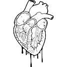 Empty Heart by Natasha Sines