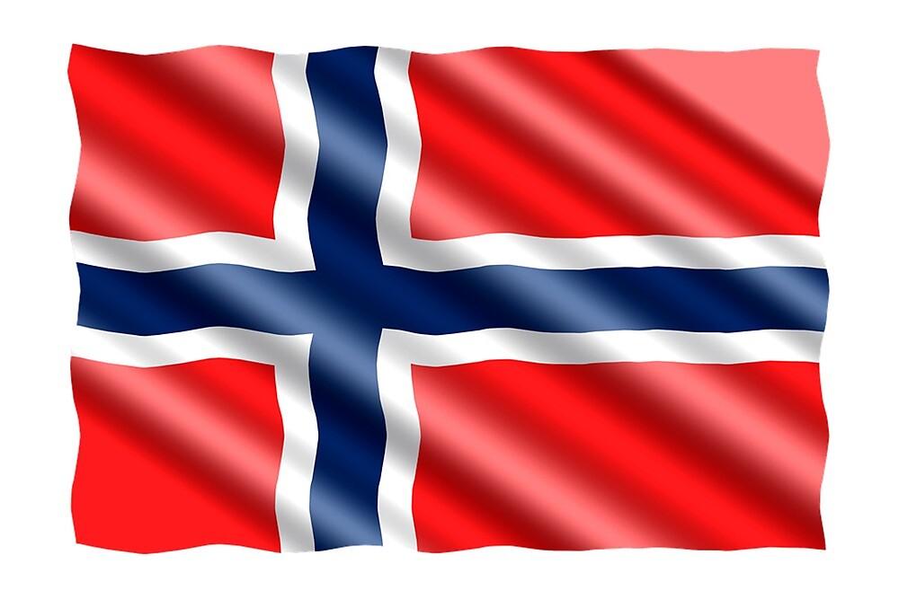 Norway Flag by prodesigner2