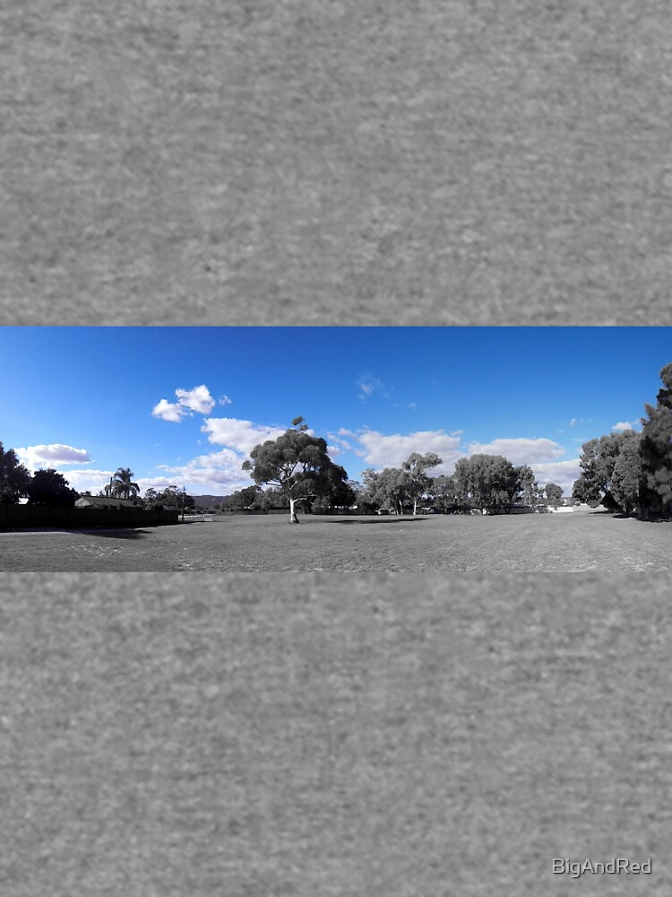 blue sky pan by BigAndRed