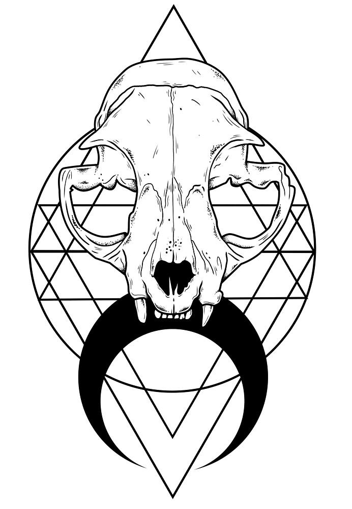 Feline Skull by Natasha Sines