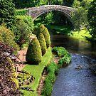 Bridge over the Doon by Tom Gomez