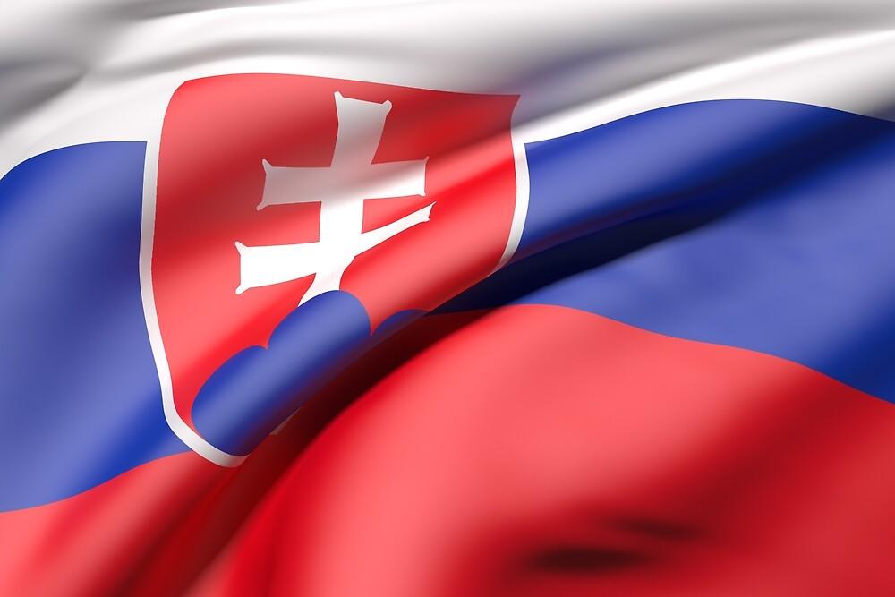 Slovakia flag by erllre74