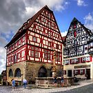 St. George's Fountain Rothenburg by Tom Gomez