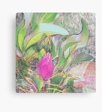 Protea Sketching in Bright Lights Canvas Print