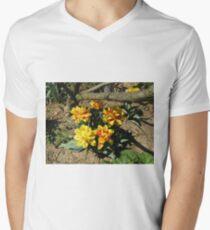 Yellow And Orange Beauties Mens V-Neck T-Shirt