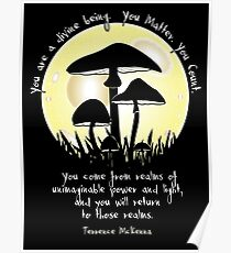 Mushrooms in Moonlight ~ Terrence McKenna Quote Poster