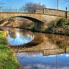 Union Canal Bridge by Tom Gomez