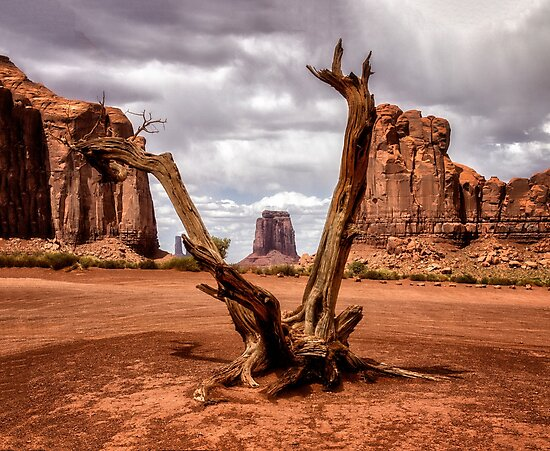 Monument Valley Framed by Kathy Weaver