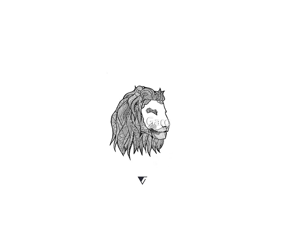 The Lion at the Park by Vipul Garg