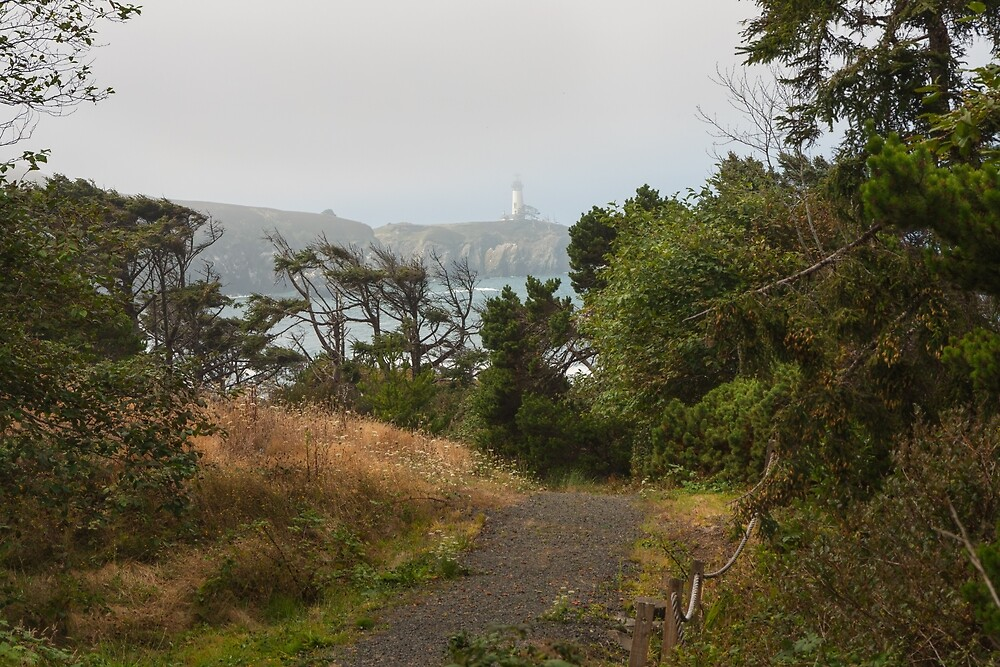 Down to the Bay by John Bailey