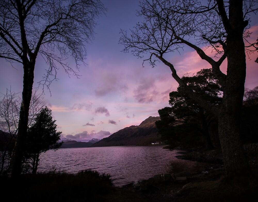 Lilac Skies by Itssdanii