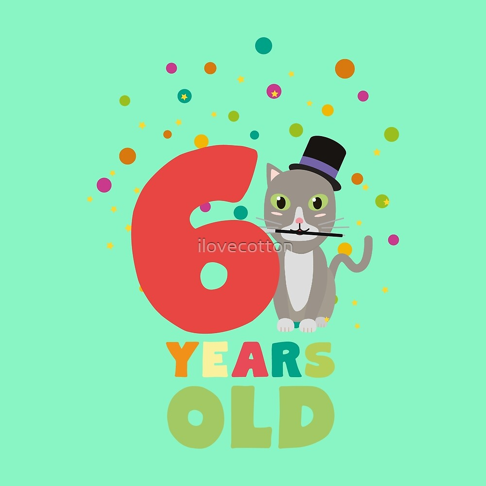 Six Years sixth Birthday Party Cat Rl9fe by ilovecotton