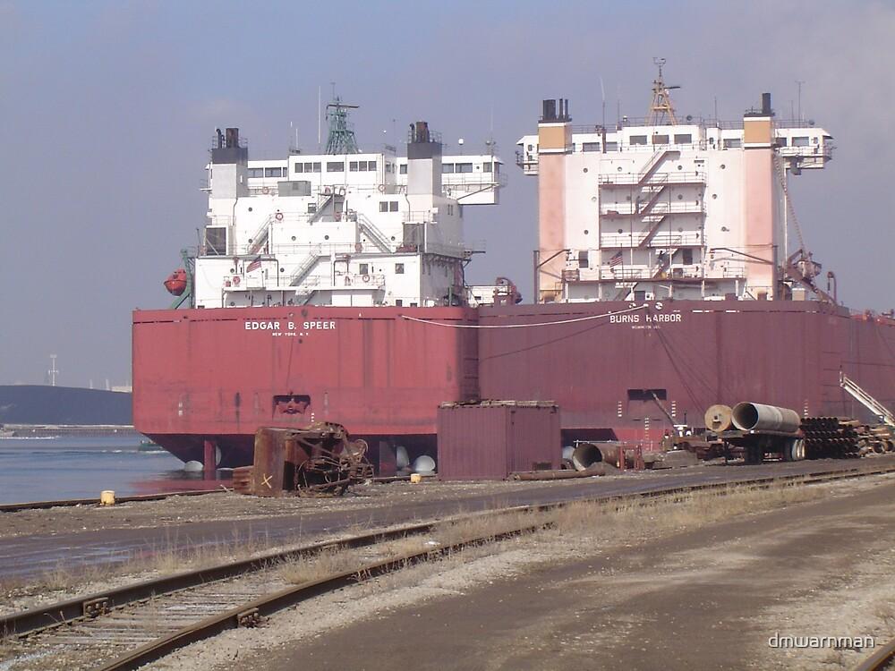 docked Ships by dmwarnman