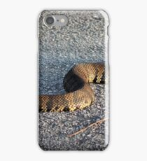Cottonmouth Full Body iPhone Case/Skin
