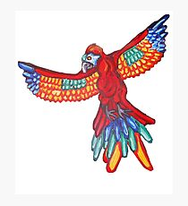 Majestic Macaw Flying into your Heart Photographic Print