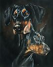 Doberman Pinscher by BarbBarcikKeith