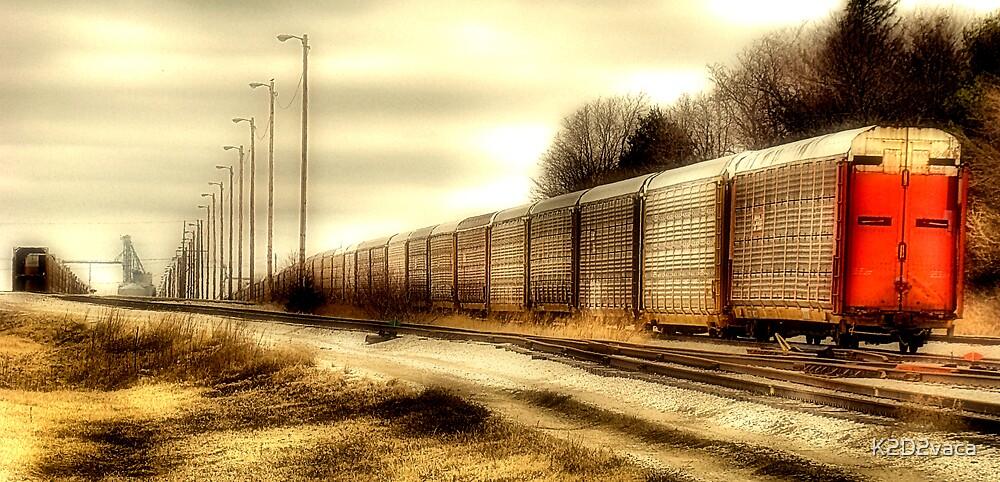Railroad by K2D2vaca
