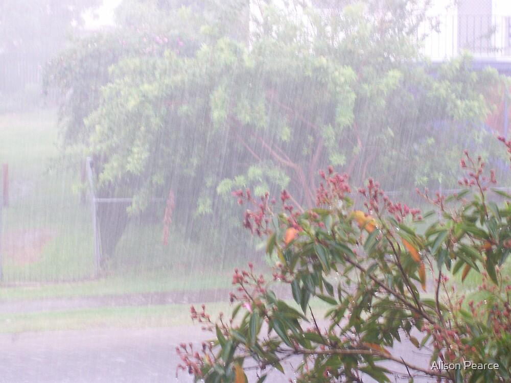 Spring Rain by Alison Pearce