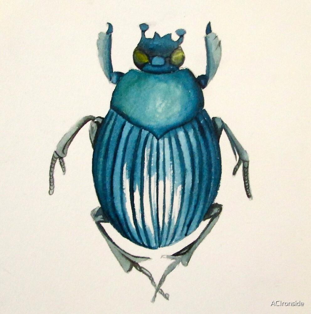 beetle by ACIronside