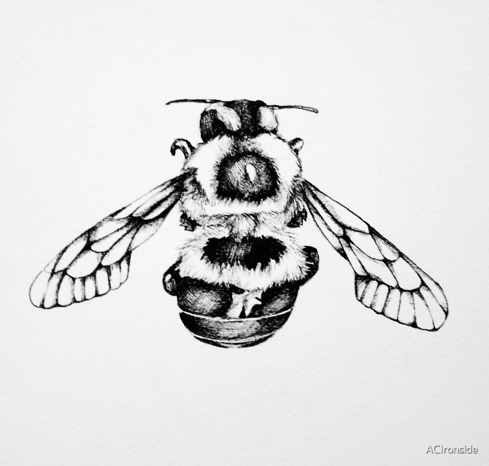 bee by ACIronside