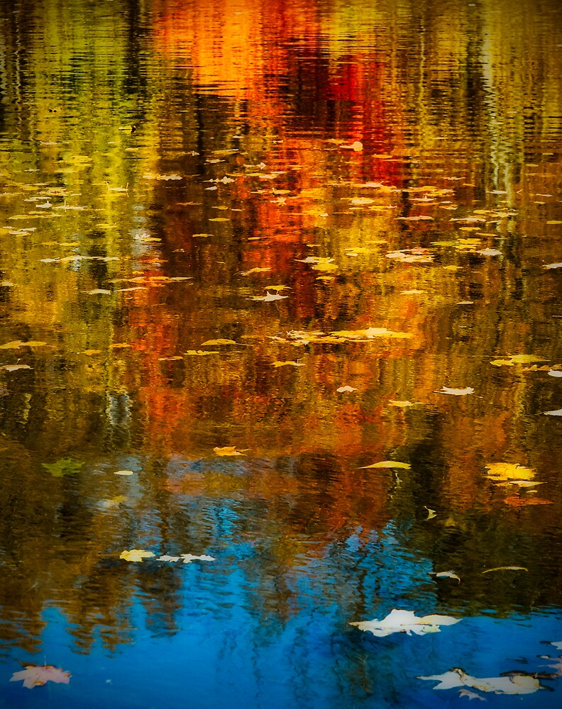 Fall Colors by James Howe