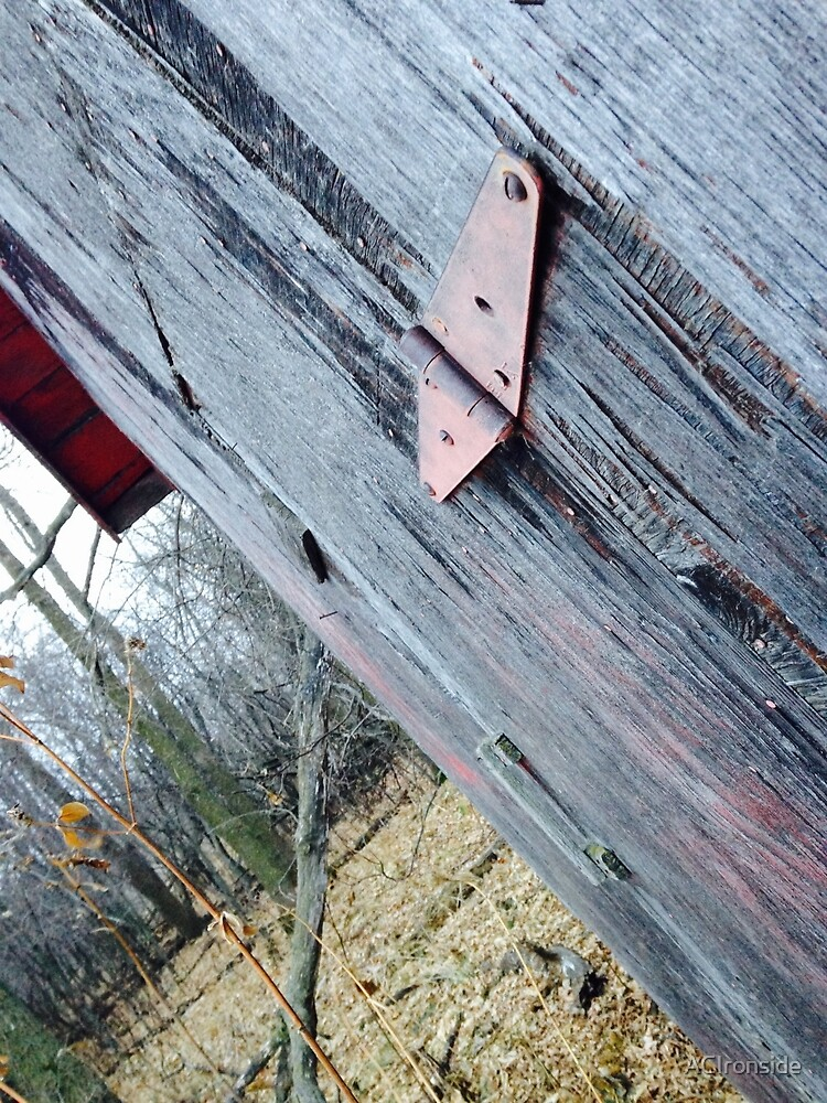 Side of a Barn in Fall by ACIronside