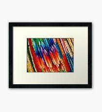 Rainbow Cranes Framed Print