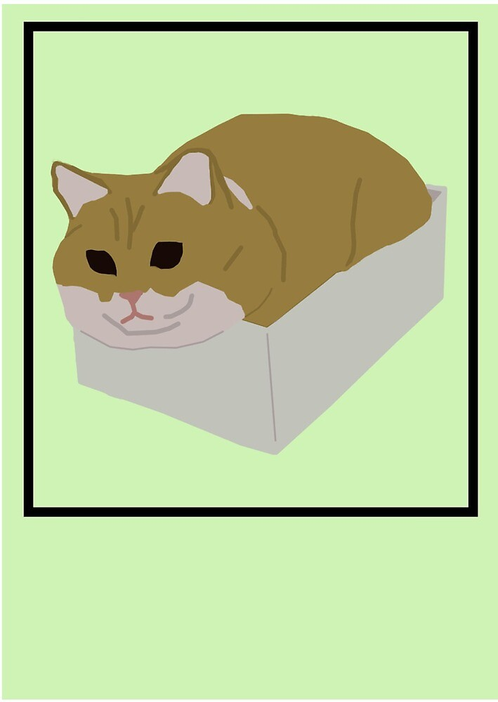 Fat Cat In Box by alyillustration