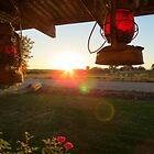 Good Day Sunshine by Diane Arndt