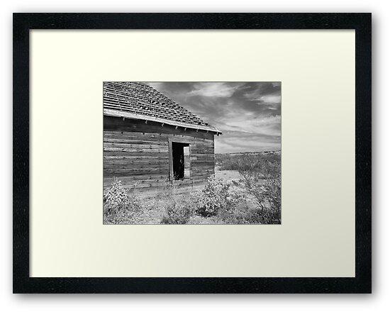 Forgotten high plains dreams by Jeff Chavez