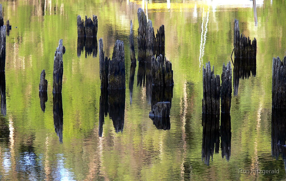 River reflections  by Ron Fitzgerald