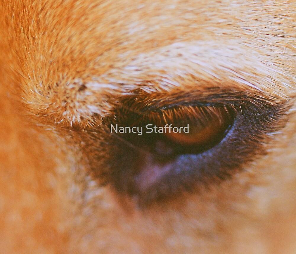 Roxie's Expression by Nancy Stafford