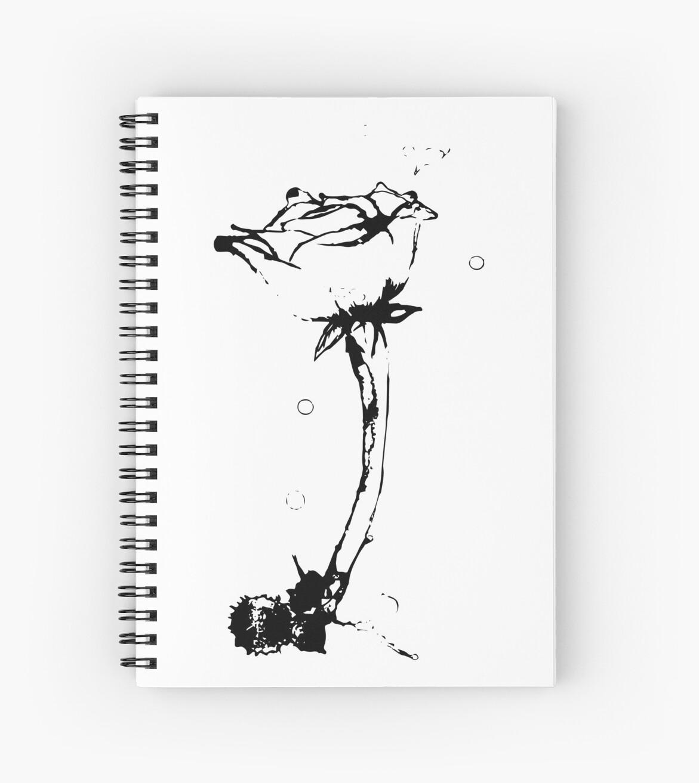 Aqua Rose by Neomas