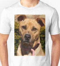 Handsome Pit Bull  Mix Unisex T-Shirt