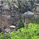 Mushroom Rocks, Grand Canyon, Arizona, Image 33 by Keith Richardson