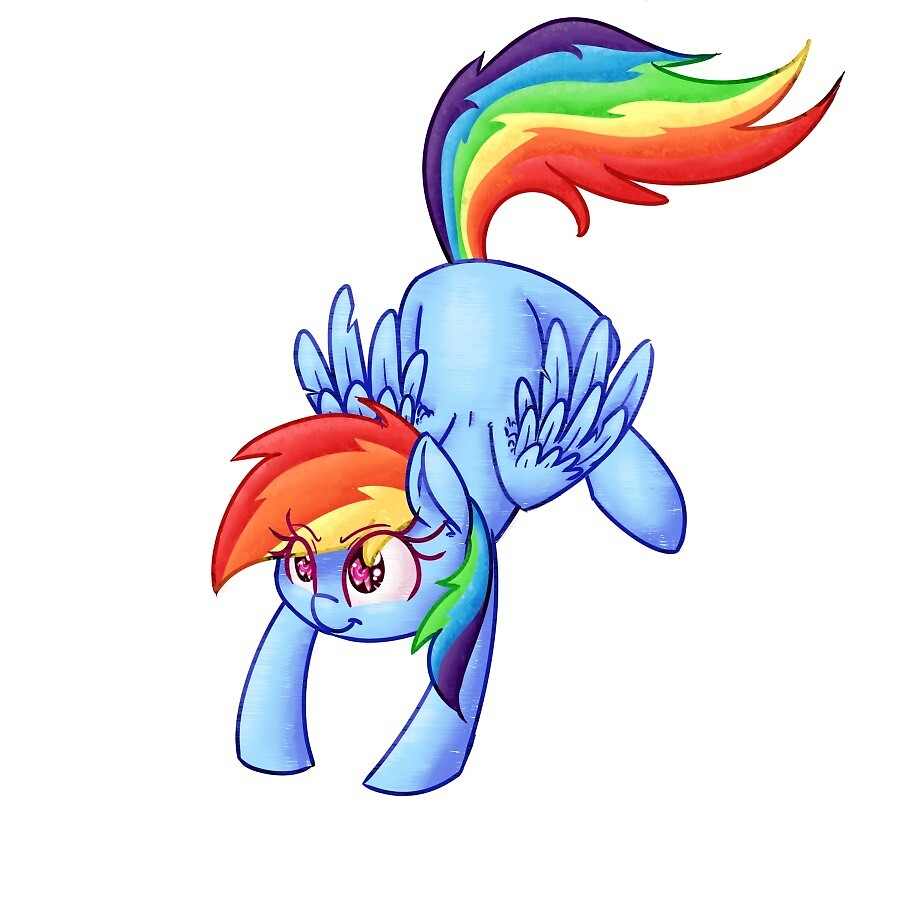Rainbow Dash by meghan-and9286