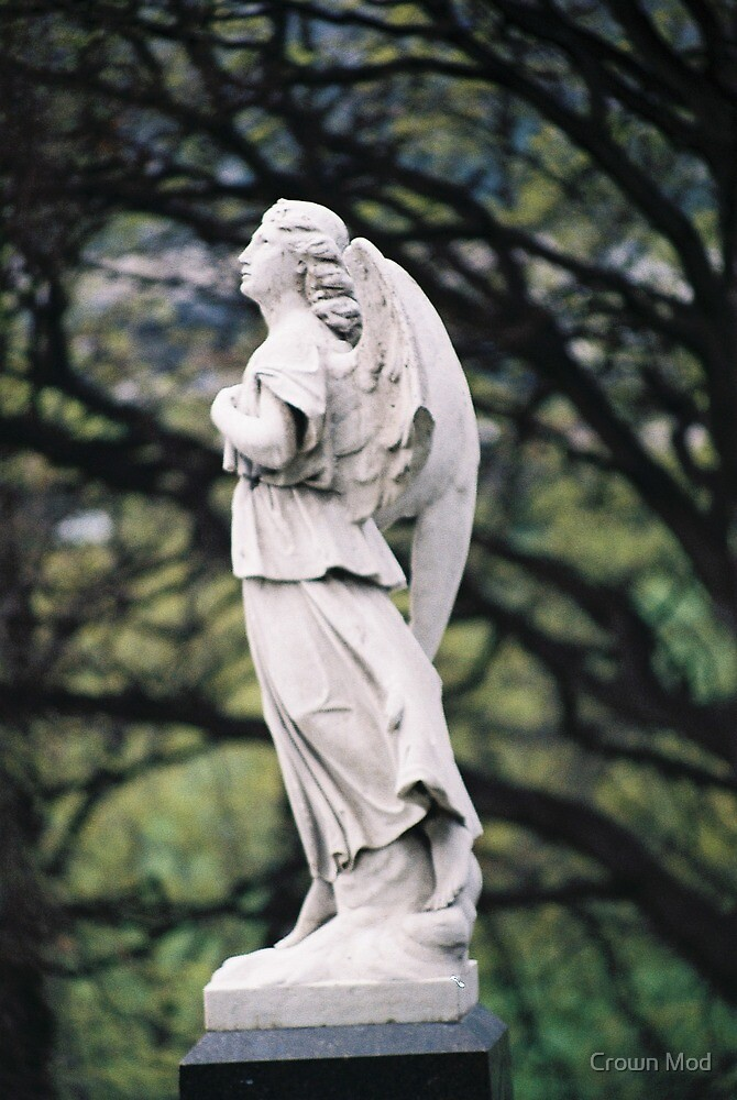 Angel  Mornington Cemetary by Libster29