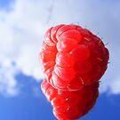 rasberry sky by wahboasti