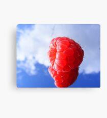 rasberry sky Canvas Print