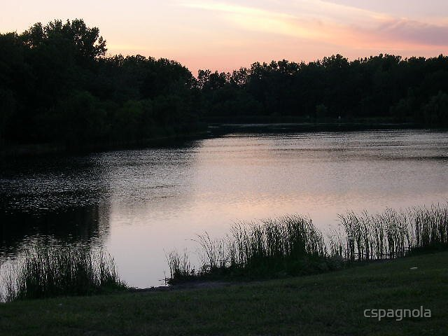 sunset at the pond by cspagnola