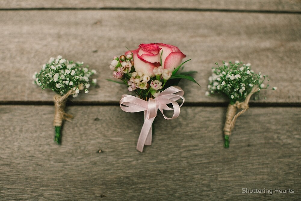 Roses by Shuttering Hearts