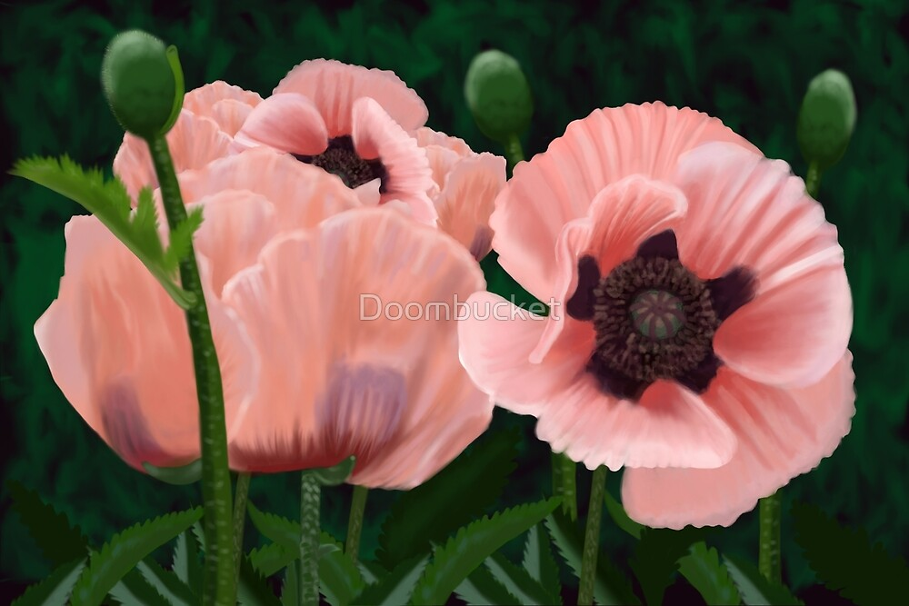 Coral Reef Poppies by Doombucket