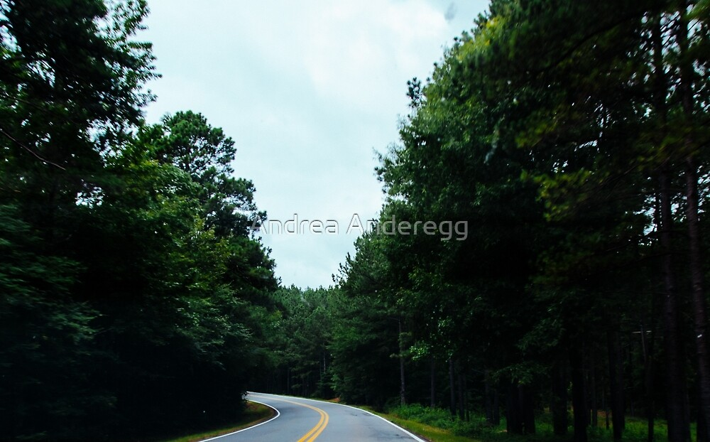 On the Road by andreaanderegg