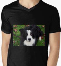 Black & white pet Sheep Dog Men's V-Neck T-Shirt