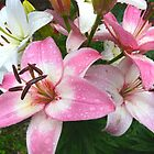 Lilies Crying in the Rain by MaeBelle