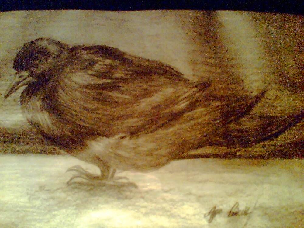 wounded bird by AYSE KAVAKLIOGLU