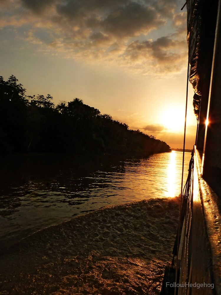 Sunset on the Amazon River by FollowHedgehog