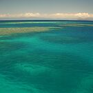Moore Reef off Cairns by Chris Cohen