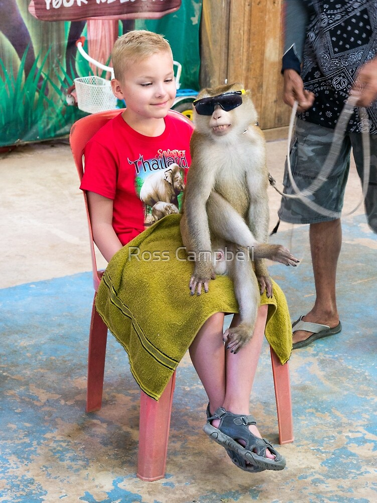 Monkey Show, Phuket, Thailand by Ross Campbell